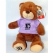 One Direction Bear in Purple Hoodie