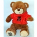 One Direction Bear in Red Hoodie